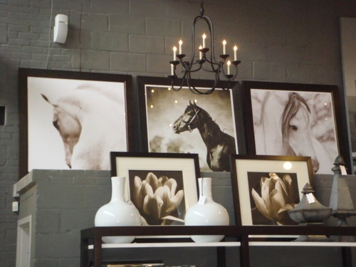 black - Horse Decor